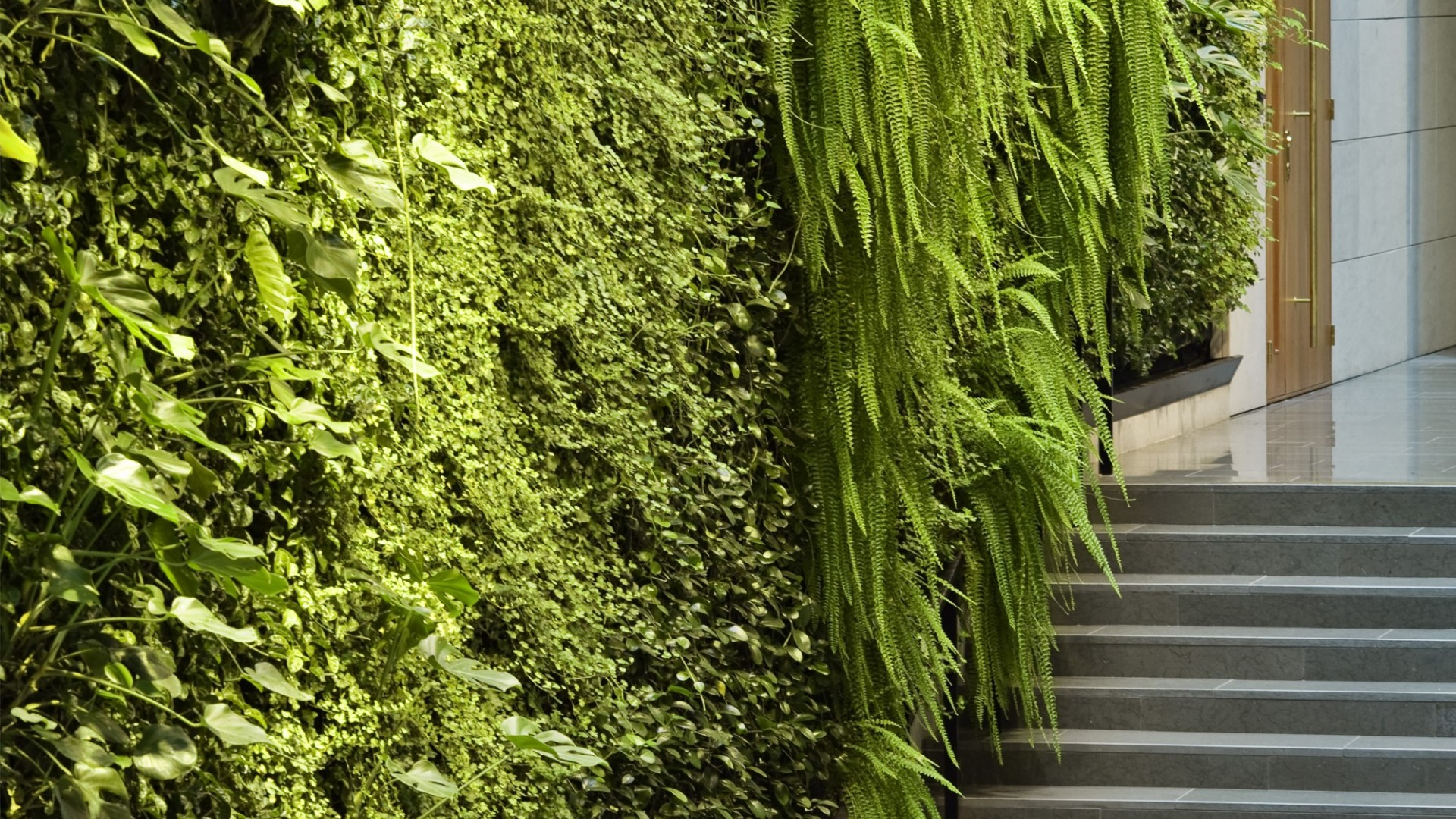 Green Fortune Green Wall